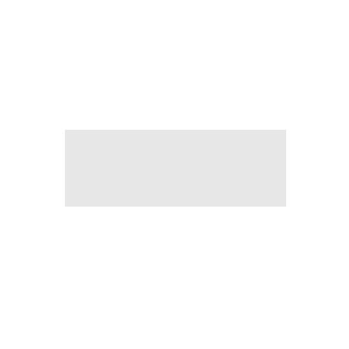 partners_autovivendi